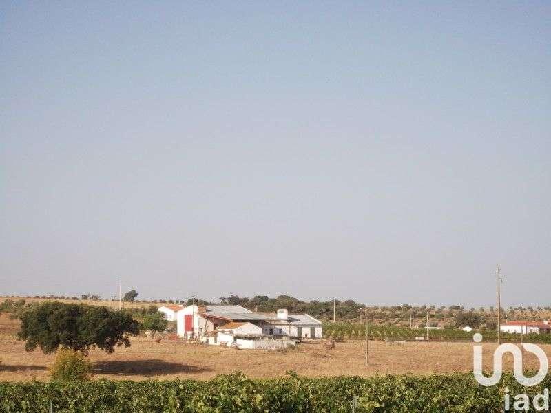 Terreno para comprar, Fronteira - Foto 1