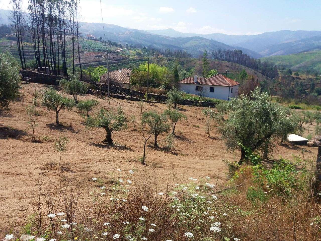 Quintas e herdades para comprar, Vila Cova de Alva e Anseriz, Arganil, Coimbra - Foto 2