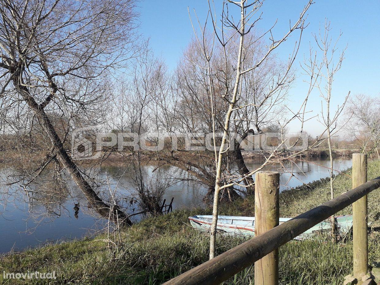 Terreno para comprar, Albergaria-a-Velha e Valmaior, Albergaria-a-Velha, Aveiro - Foto 3