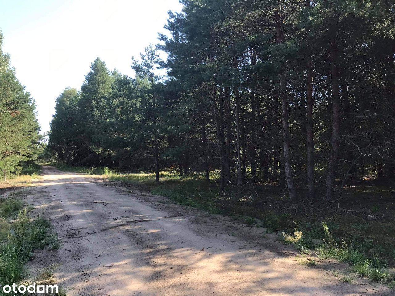 Działka / Łuka - Zalew Siemianówka / 1424 m2