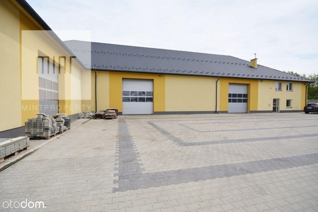 Lokal użytkowy, 1 560 m², Rzeszów