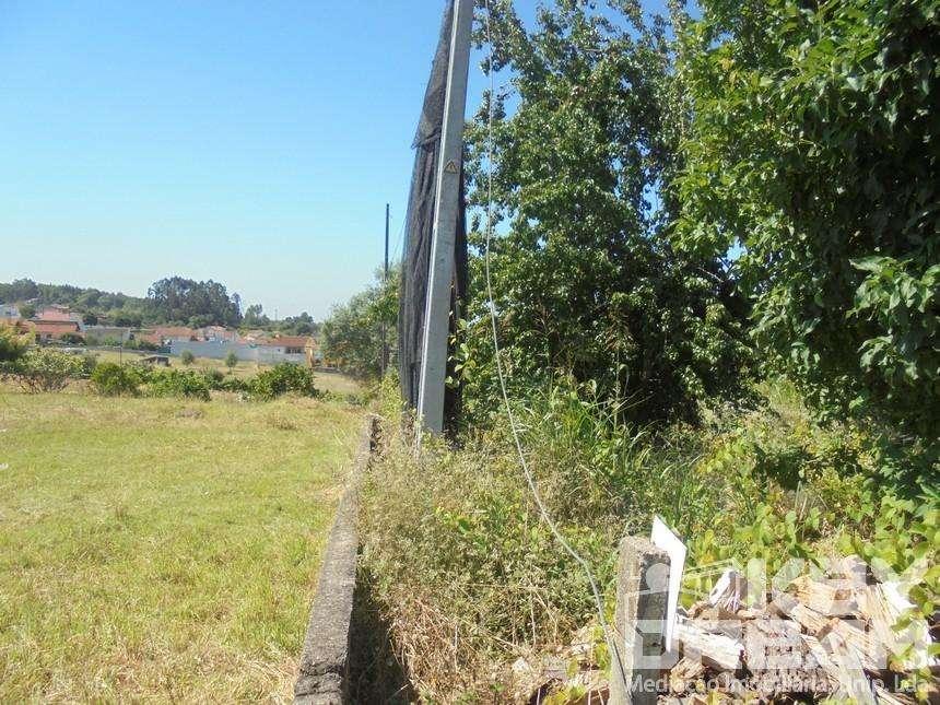 Terreno para comprar, Antuzede e Vil de Matos, Coimbra - Foto 4