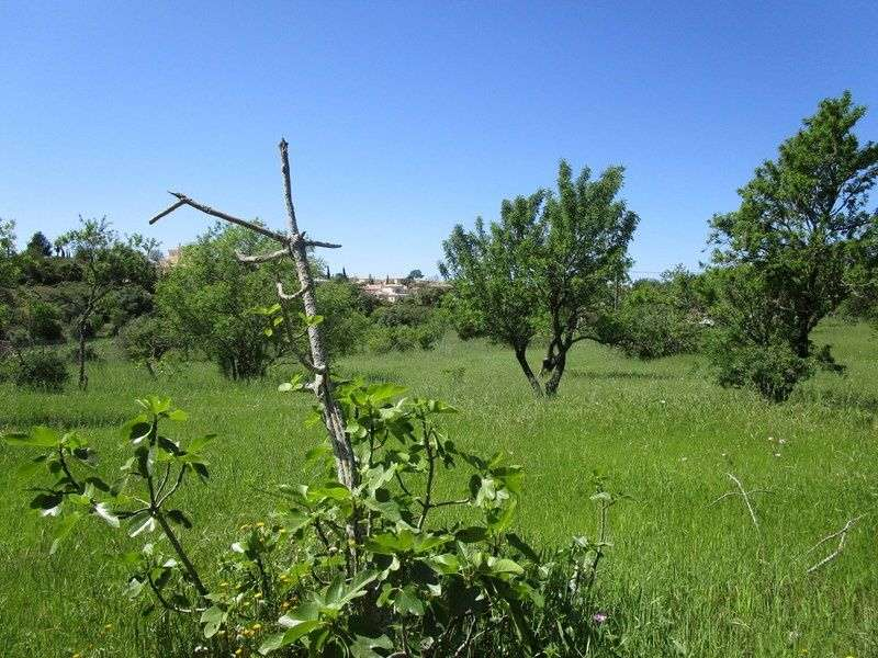 Quintas e herdades para comprar, Estômbar e Parchal, Lagoa (Algarve), Faro - Foto 9
