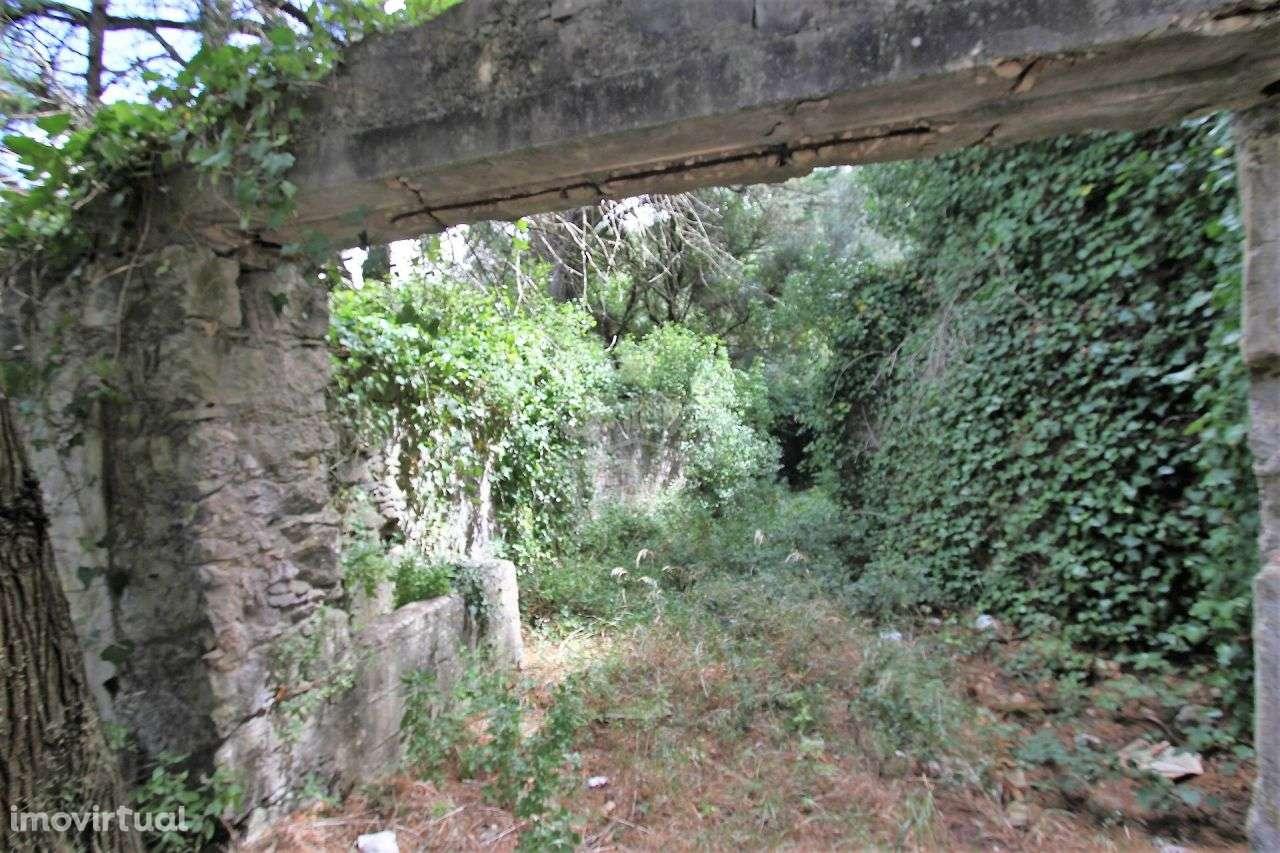 Quintas e herdades para comprar, Alcabideche, Cascais, Lisboa - Foto 18