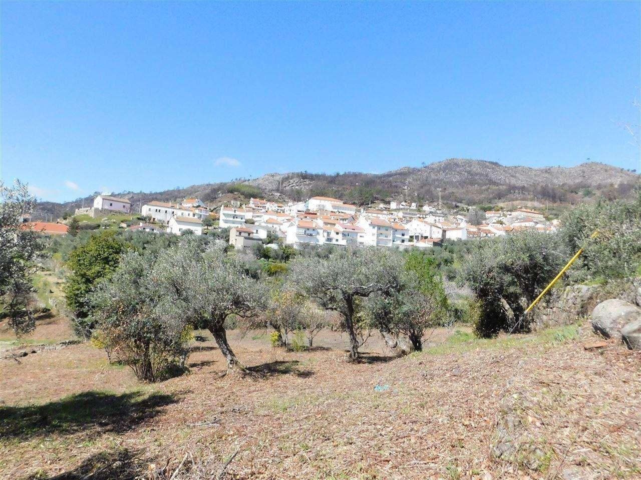Terreno para comprar, Alpedrinha, Castelo Branco - Foto 4