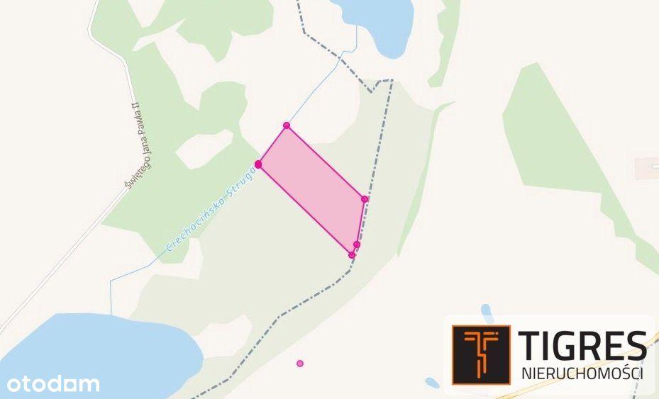 Działka, 23 800 m², Ciechocin