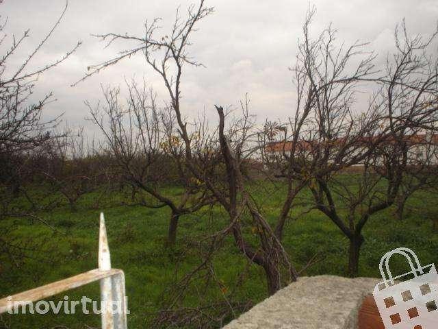 Terreno para comprar, Samora Correia, Benavente, Santarém - Foto 5