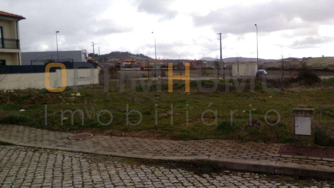 Terreno para comprar, Mogadouro, Valverde, Vale de Porco e Vilar de Rei, Mogadouro, Bragança - Foto 1