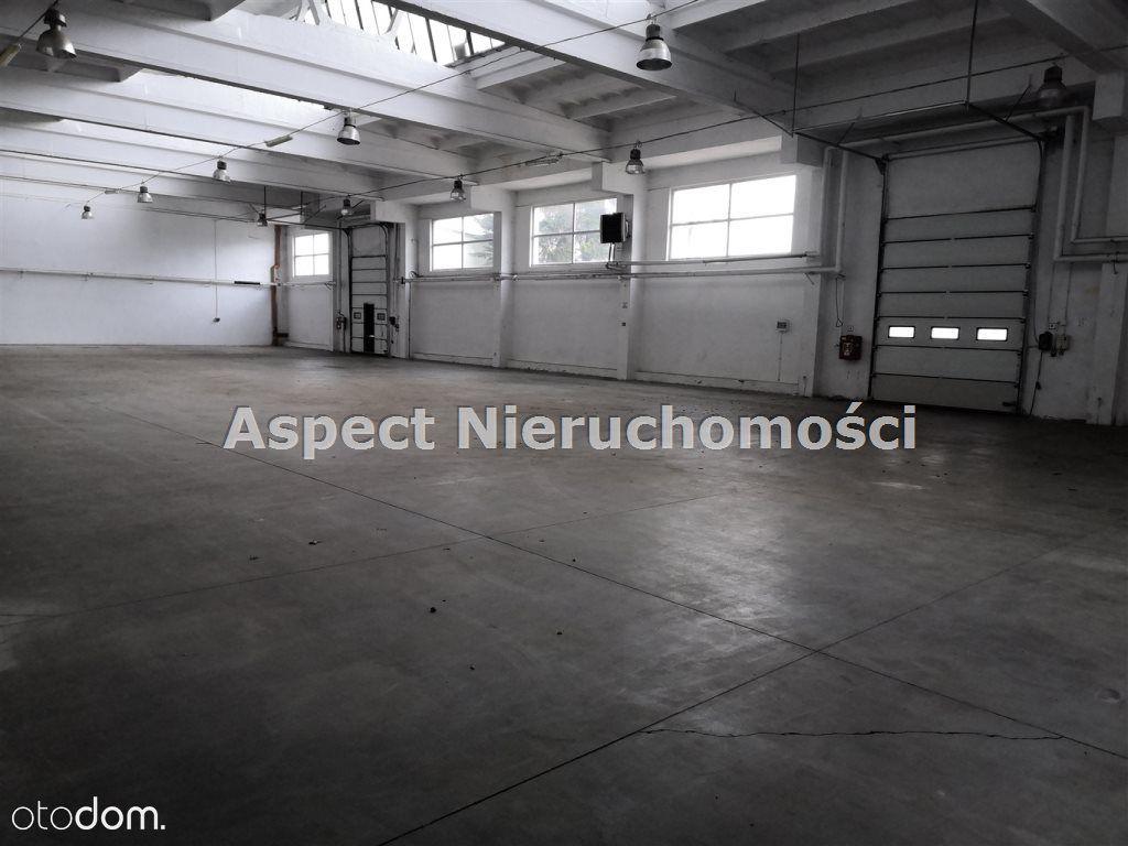 Hala/Magazyn, 1 000 m², Pabianice