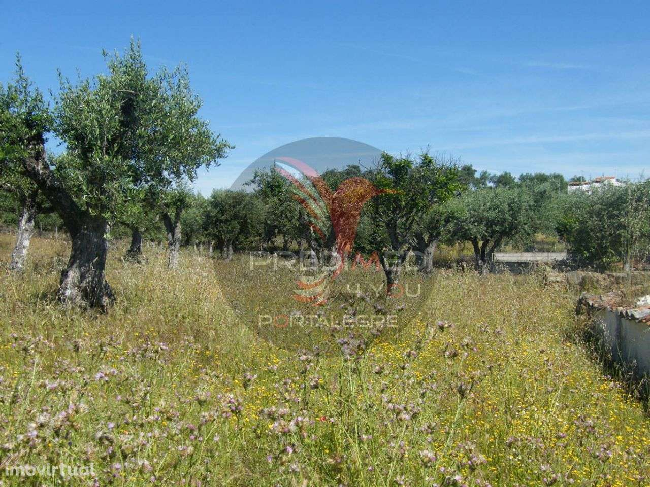 Quintas e herdades para comprar, Urra, Portalegre - Foto 7