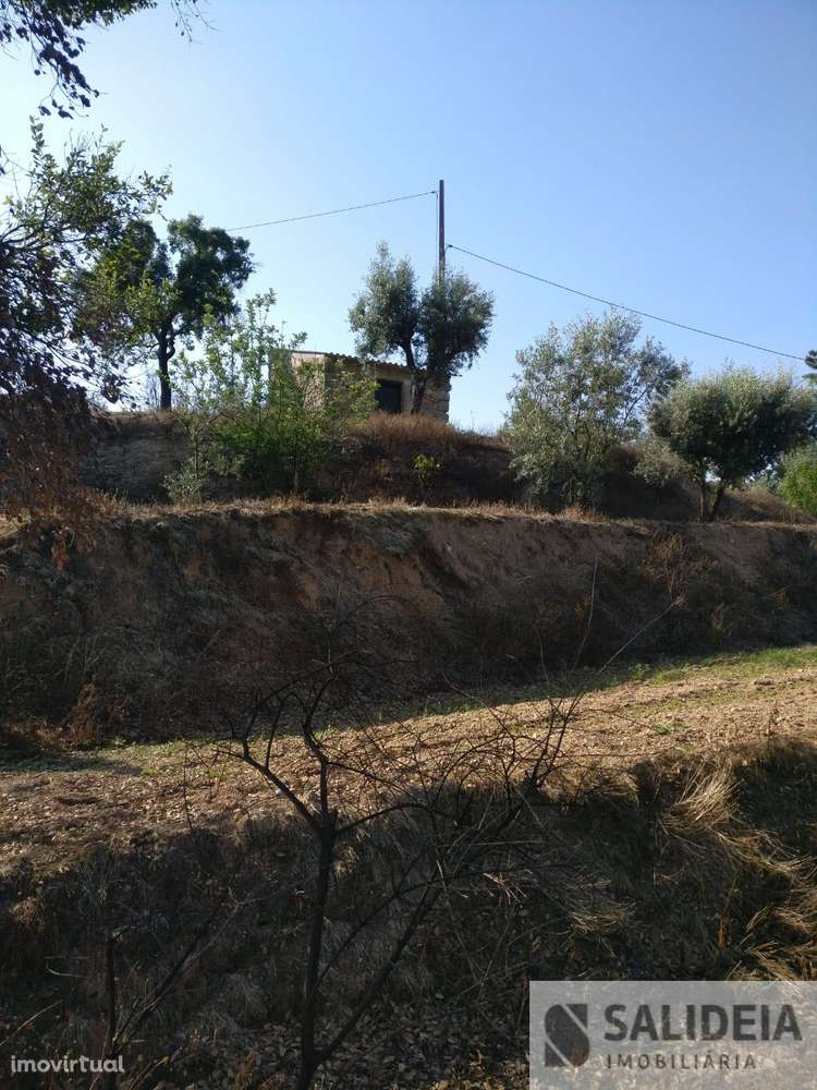Terreno para comprar, Currelos, Papízios e Sobral, Viseu - Foto 1