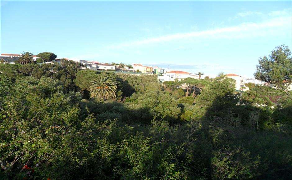 Terreno para comprar, Alcabideche, Lisboa - Foto 4