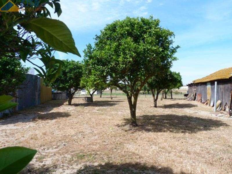 Quintas e herdades para comprar, Samora Correia, Santarém - Foto 44