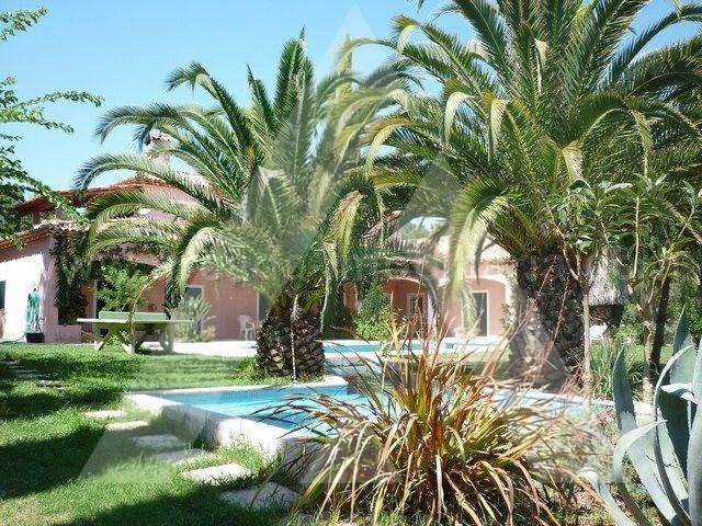 Quintas e herdades para comprar, Sangalhos, Anadia, Aveiro - Foto 4