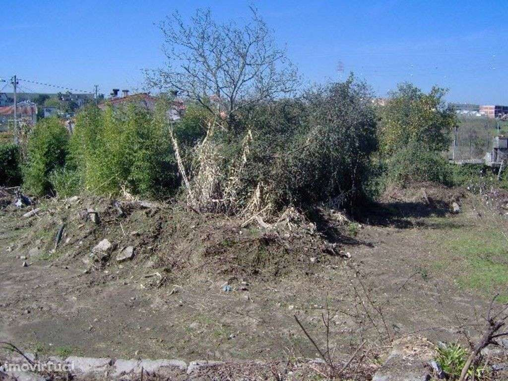 Quintas e herdades para comprar, Palmeira, Braga - Foto 4