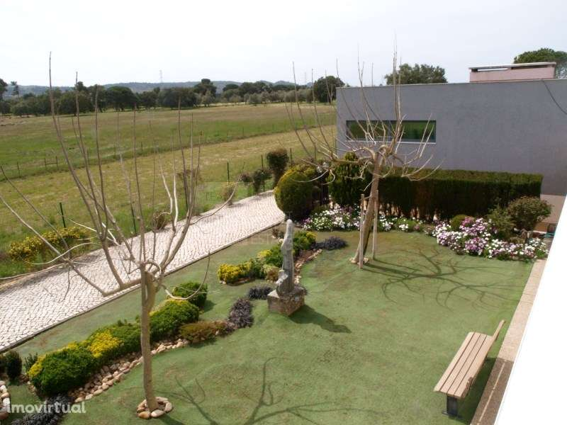 Quintas e herdades para comprar, Quinta do Anjo, Setúbal - Foto 5