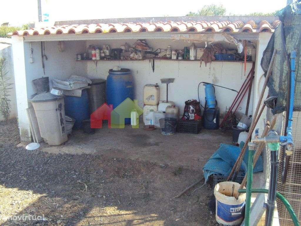 Quintas e herdades para comprar, São Matias, Beja - Foto 7