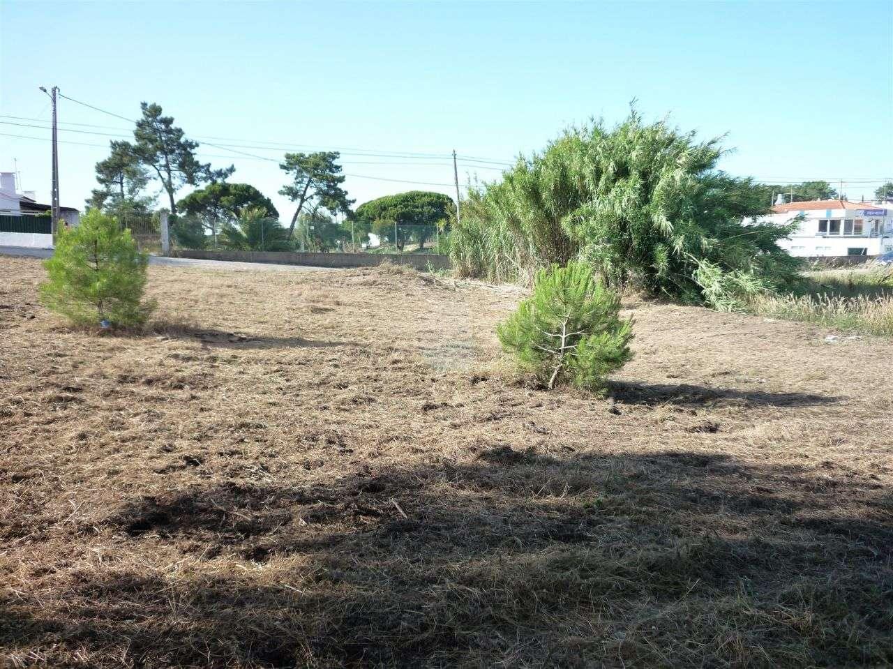 Terreno para comprar, Castelo (Sesimbra), Setúbal - Foto 5