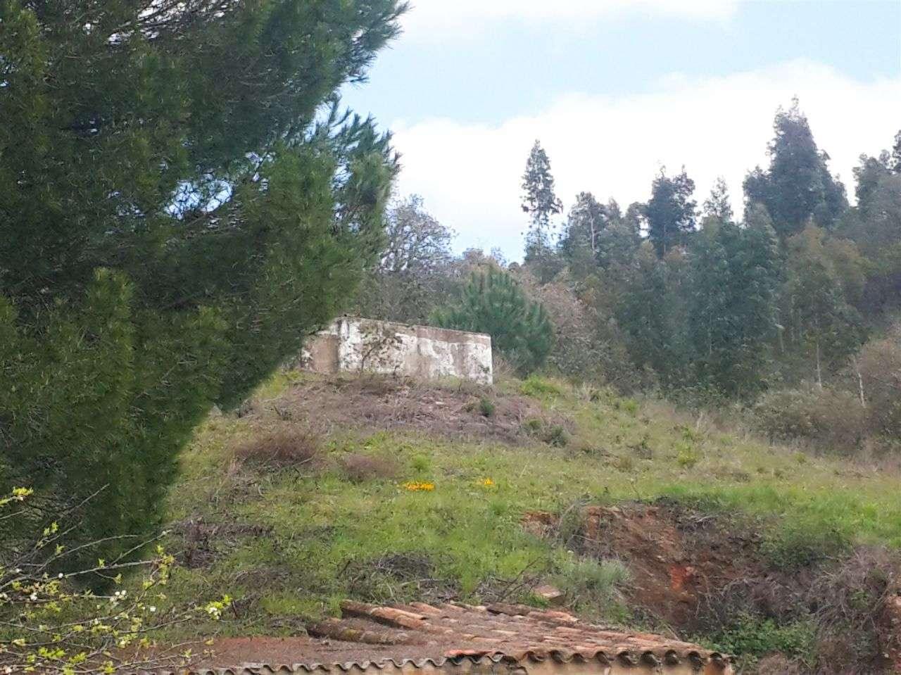 Quintas e herdades para comprar, Marmelete, Monchique, Faro - Foto 16