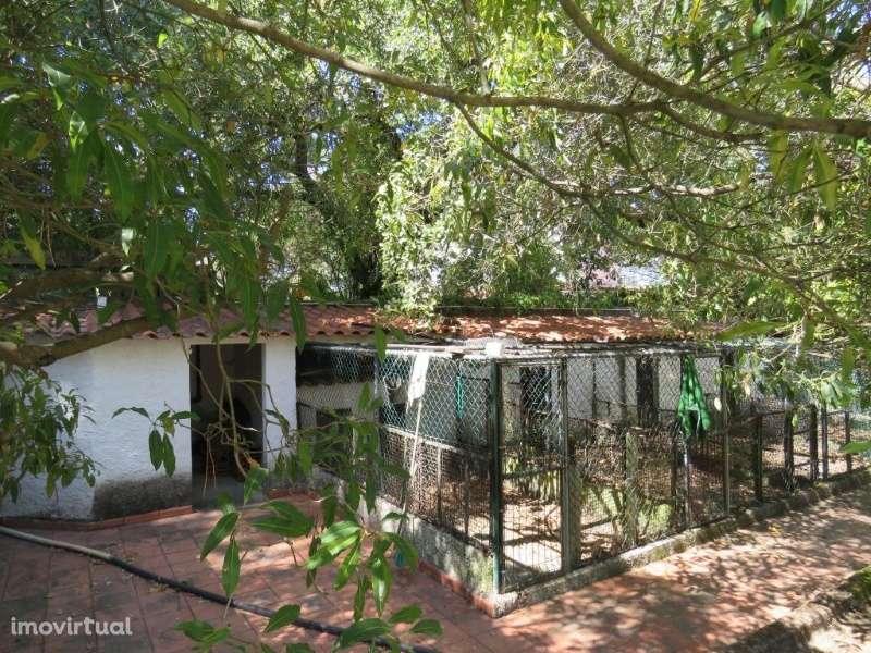 Moradia para comprar, Setúbal (São Julião, Nossa Senhora da Anunciada e Santa Maria da Graça), Setúbal - Foto 7