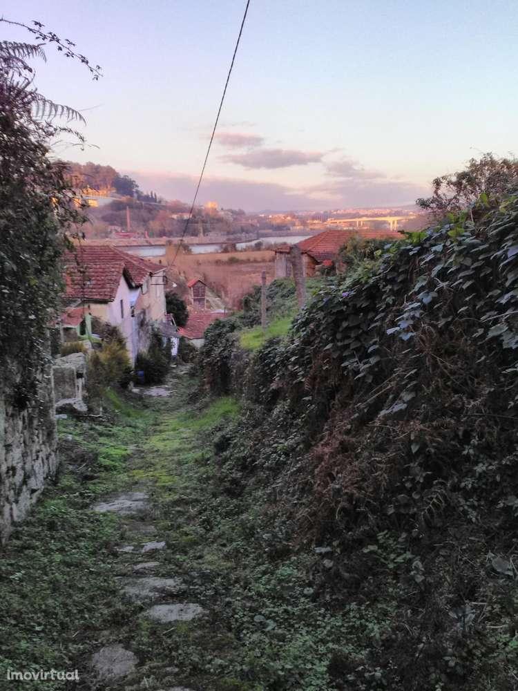Quintas e herdades para comprar, Oliveira do Douro, Vila Nova de Gaia, Porto - Foto 37