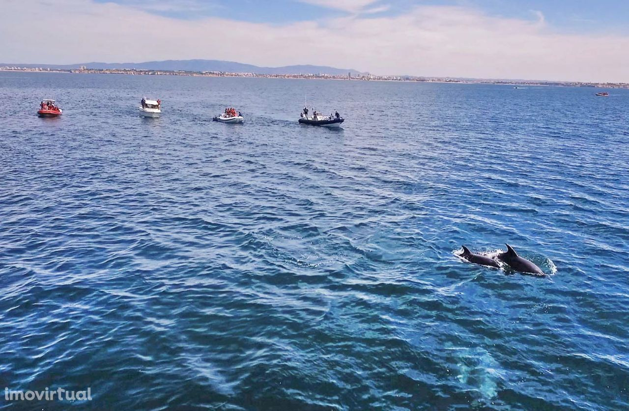 Moradias para férias, Ferragudo, Lagoa (Algarve), Faro - Foto 34