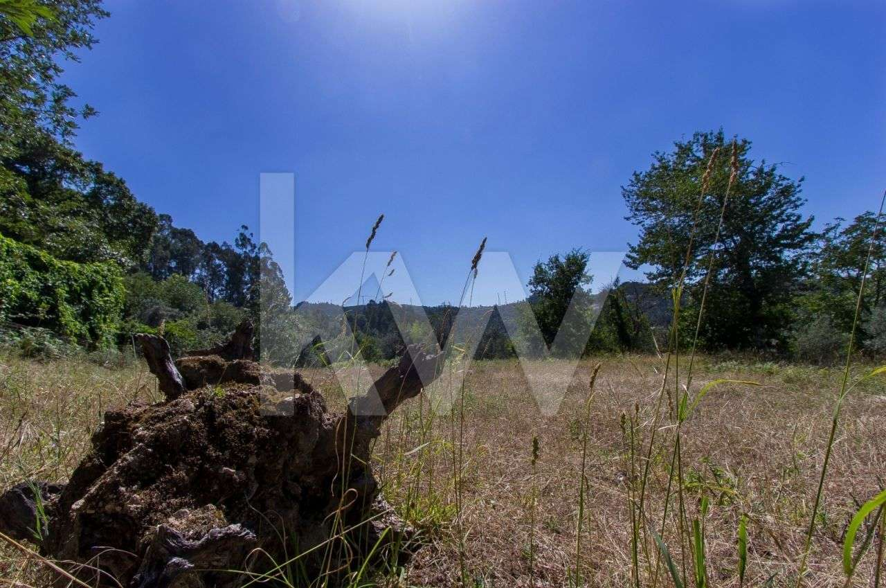 Terreno para comprar, Covelas, Braga - Foto 6