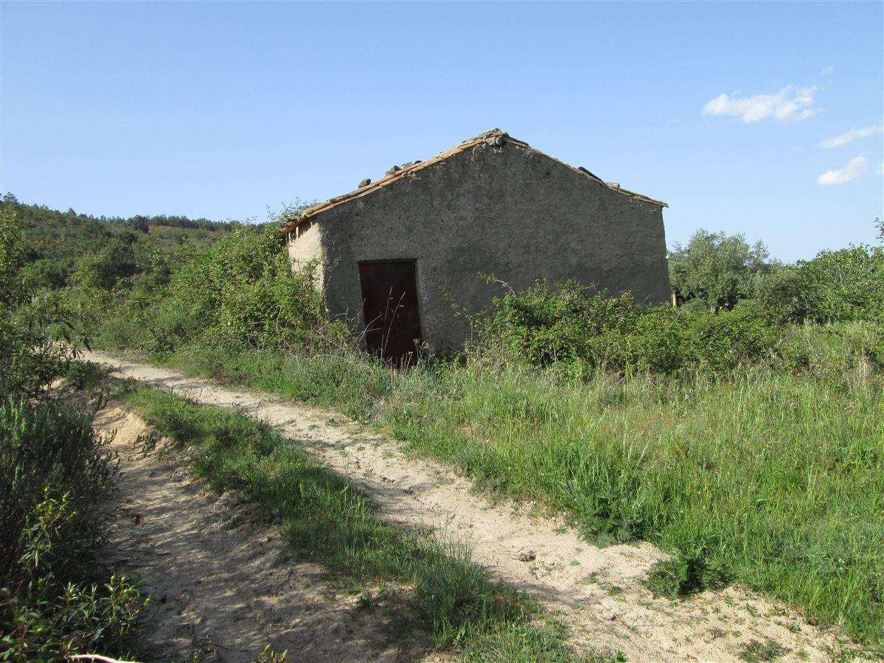 Quintas e herdades para comprar, Telhado, Castelo Branco - Foto 4