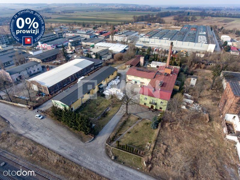 Lokal użytkowy, 2 350 m², Chojnów