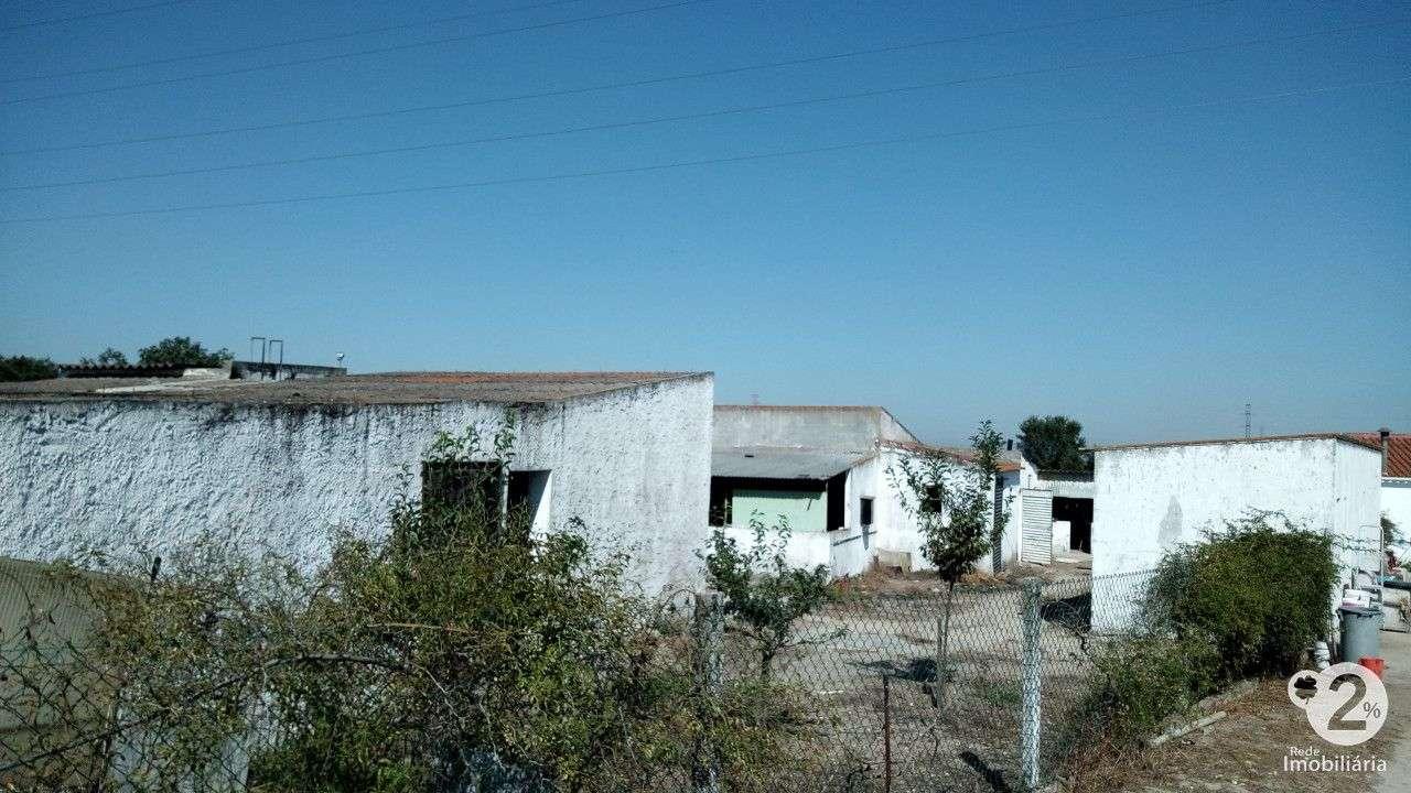 Quintas e herdades para comprar, Palmela, Setúbal - Foto 19