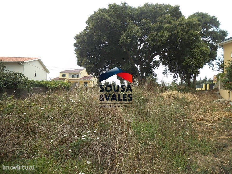 Terreno para comprar, Coz, Alpedriz e Montes, Alcobaça, Leiria - Foto 3