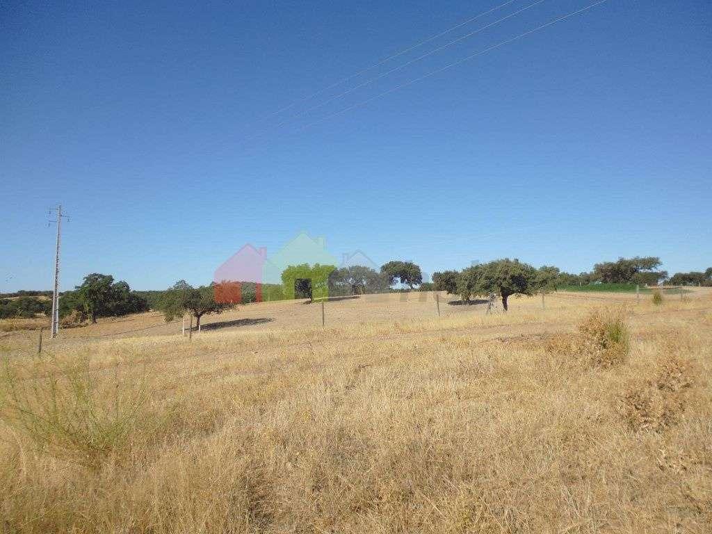 Quintas e herdades para comprar, Vila Verde de Ficalho, Beja - Foto 5