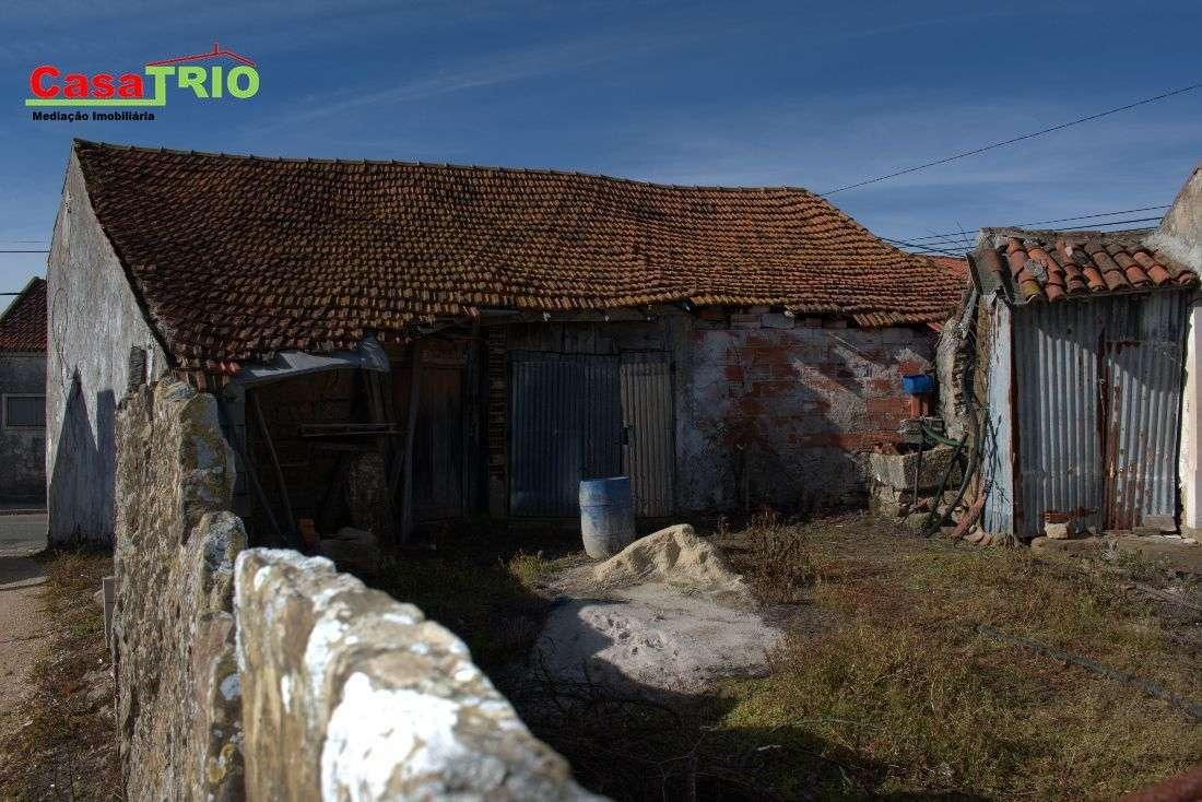 Quintas e herdades para comprar, Bárrio, Leiria - Foto 4
