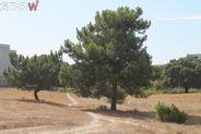 Terreno para comprar, Atalaia e Alto Estanqueiro-Jardia, Montijo, Setúbal - Foto 5