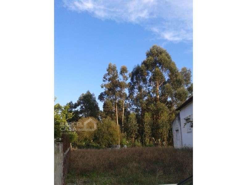 Terreno para comprar, Barroselas e Carvoeiro, Viana do Castelo - Foto 6