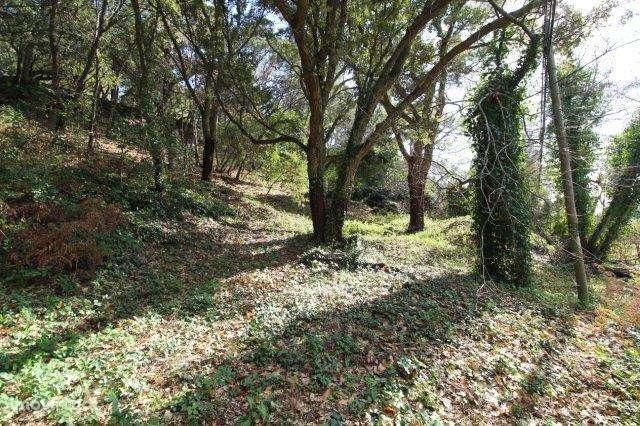 Quintas e herdades para comprar, Monchique - Foto 2