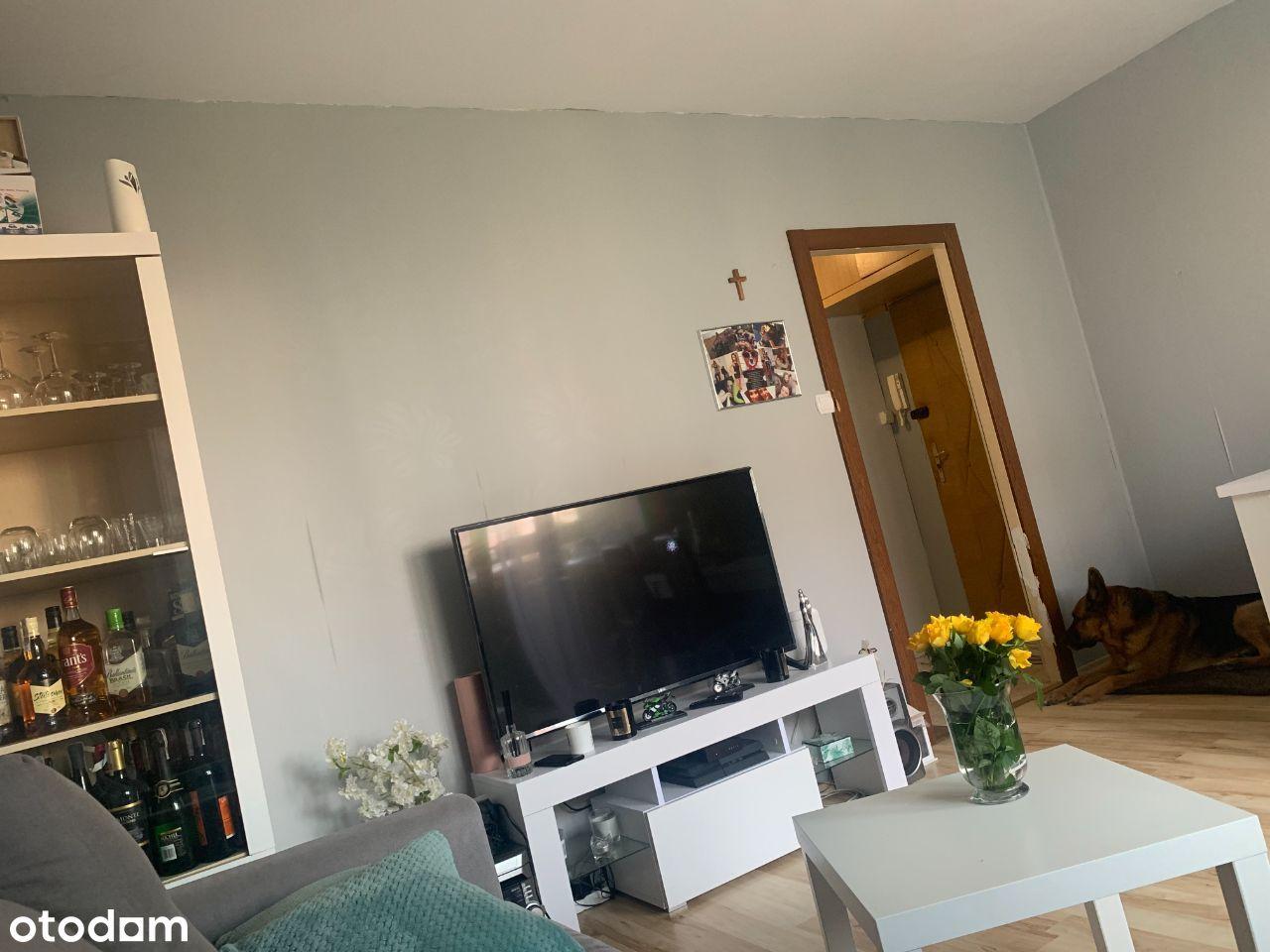 2 pokojowe mieszkanie do wynajęcia Parkowa
