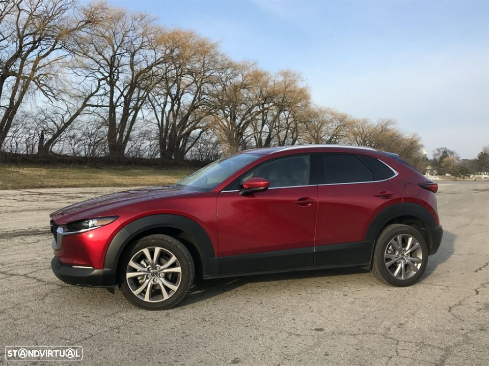 Mazda CX-30 1.8 Sky-D Evolve i-Active +Sport+Safety+Sound - 23