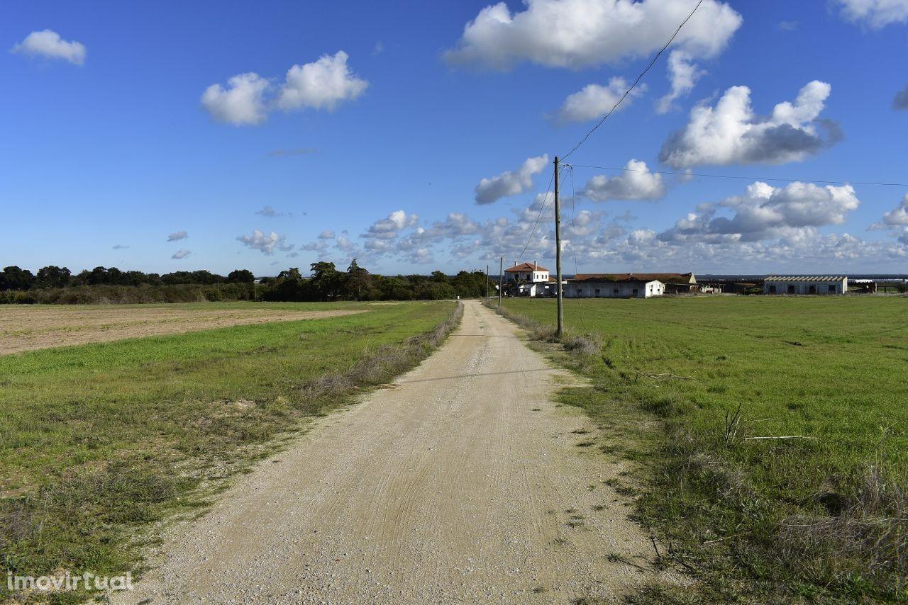 Terreno para comprar, Estrada Nacional 4, Atalaia e Alto Estanqueiro-Jardia - Foto 1