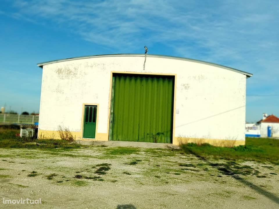 Armazém e moradia rústica em Foros de Salvaterra