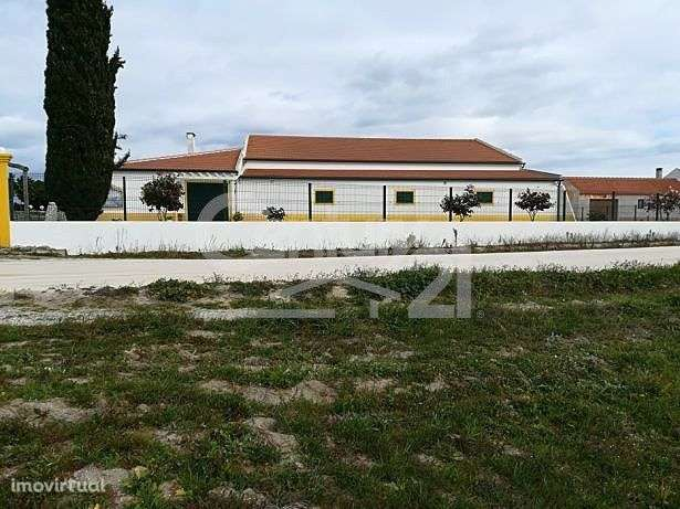 Quintas e herdades para comprar, Branca, Santarém - Foto 4