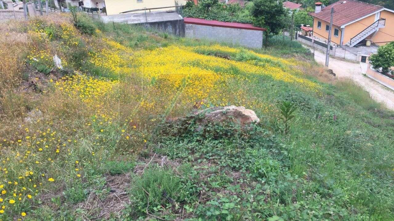 Terreno para comprar, Refojos de Basto, Outeiro e Painzela, Cabeceiras de Basto, Braga - Foto 5