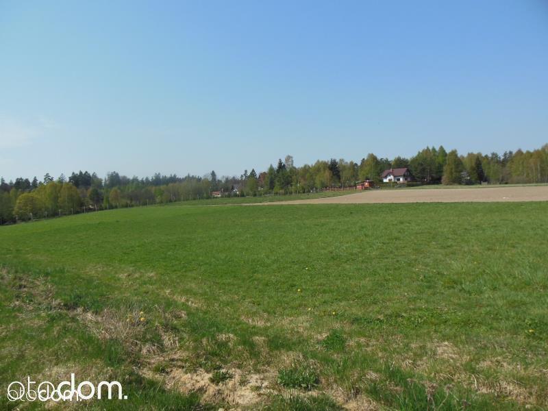 Działka rolna - Sitno