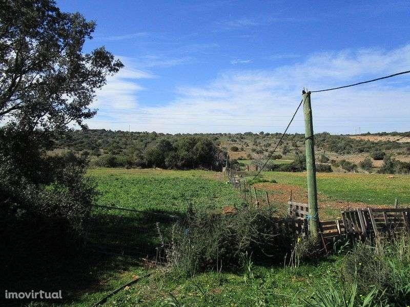 Quintas e herdades para comprar, Alvor, Faro - Foto 4