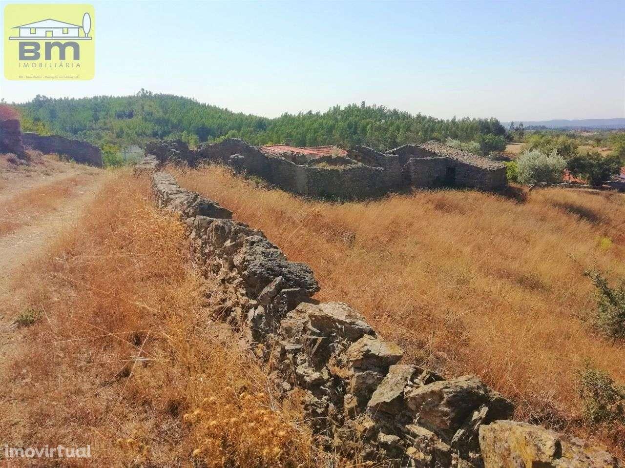 Quintas e herdades para comprar, Fratel, Vila Velha de Rodão, Castelo Branco - Foto 11