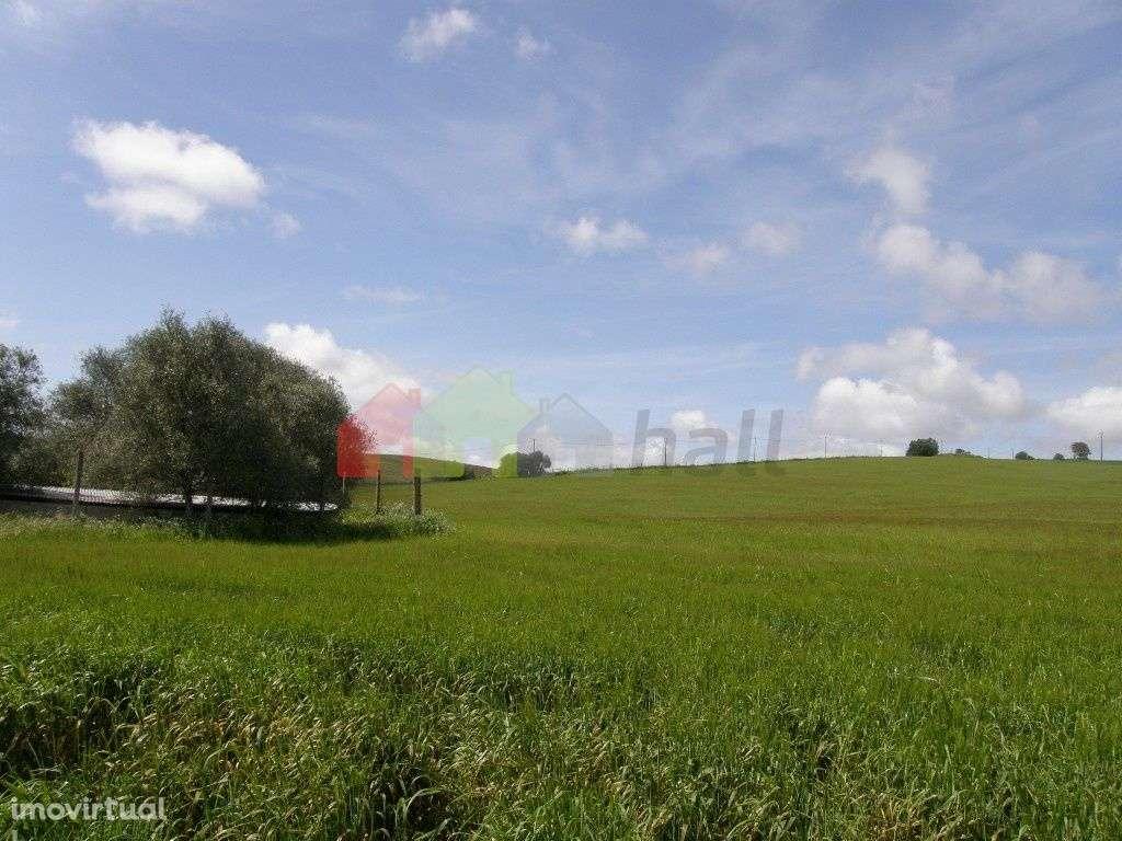 Terreno para comprar, Santa Vitória e Mombeja, Beja - Foto 2