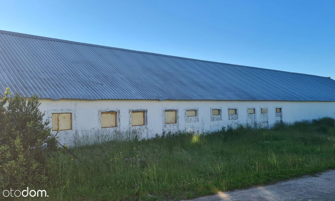 Sprzedam halę produkcyjno-usługową- Czepino