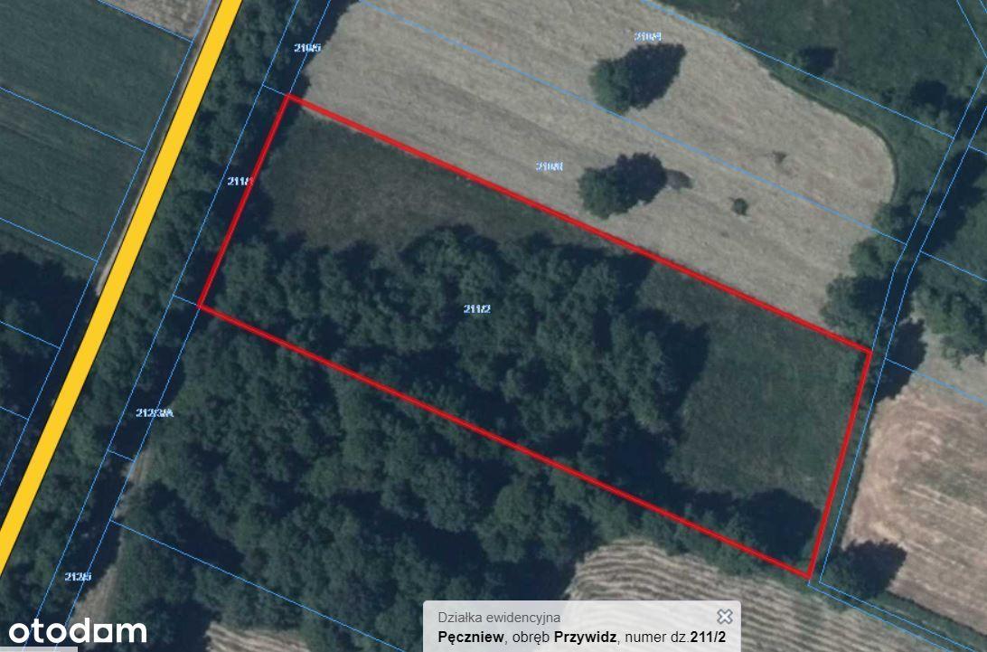 Działka rolno-leśna 1,43 ha w Przywidz gm Pęczniew