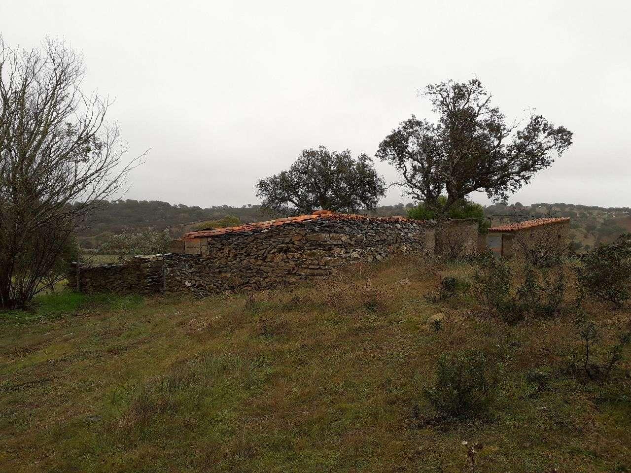 Quintas e herdades para comprar, Almodôvar e Graça dos Padrões, Beja - Foto 13