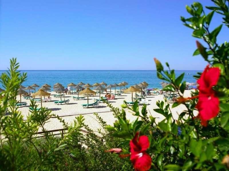 Imorealestate . Algarve